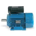 motor monofazat 2.20kw / 90gab / 3000rot